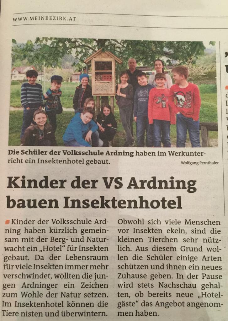 berg-und-naturwacht-ardning-insektenhotel-volksschule-c-wolfgang-pernthaler