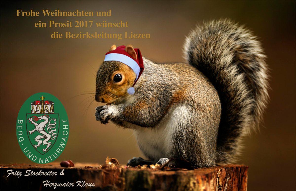 Frohe, besinnliche Weihnachten und ein Prosit 2017