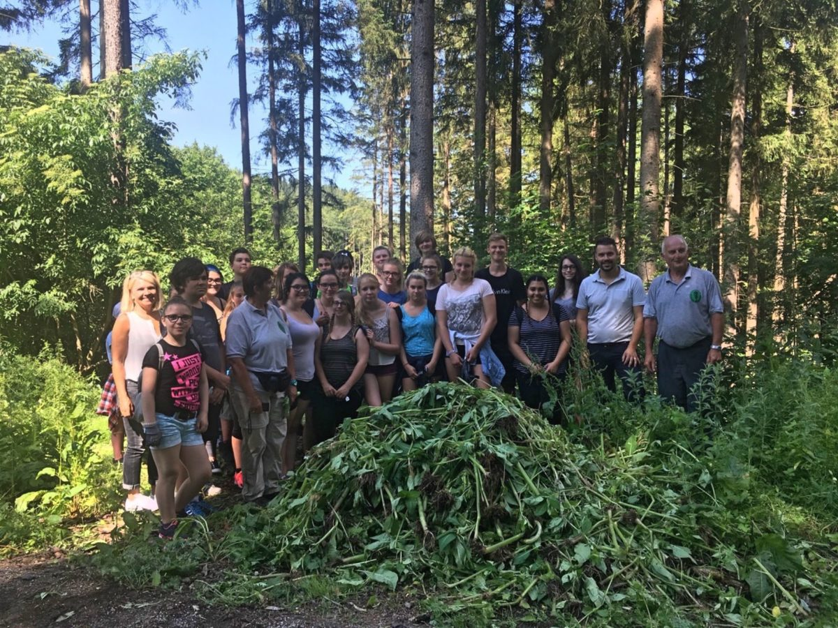 Polytechnische Schule Rottenmann aktiv gegen Neophyten